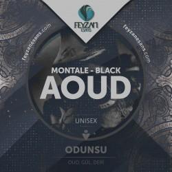 Aoud Night Montale Kokusu Esansı